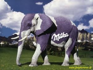 Milka Elefant
